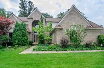 Canton Single Family Home For Sale: 310 W Country Club Ln