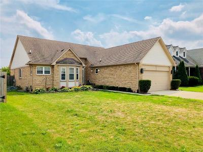 Chesterfield  Single Family Home For Sale: 31610 Hiddenbrook Dr