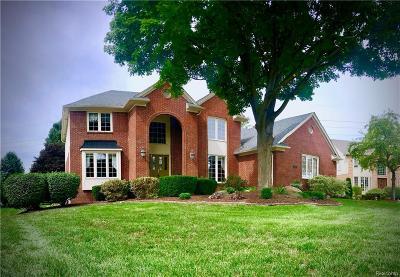 Shelby Twp Single Family Home For Sale: 54239 Talon Crt