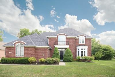 Canton Single Family Home For Sale: 281 Woodward Rd