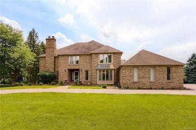 Farmington Hills Single Family Home For Sale: 34415 Ramble Hills Dr