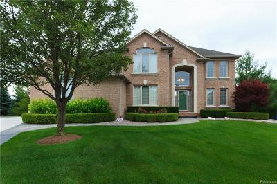 Macomb Single Family Home For Sale: 7215 Larch Crt