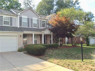 Belleville Single Family Home For Sale: 14490 Wildbrook Dr