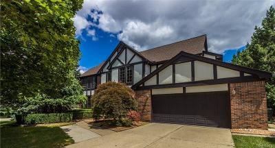 Rochester Hills Single Family Home For Sale: 740 Timberline Dr