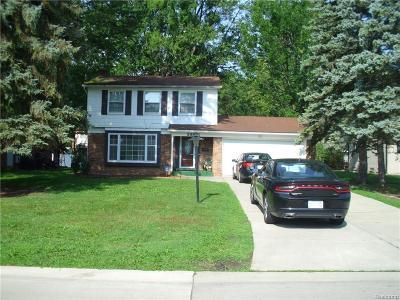 Southfield Single Family Home For Sale: 29821 Rambling Rd