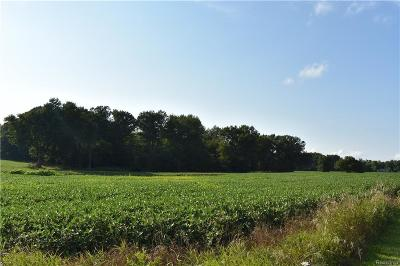 Lapeer Residential Lots & Land For Sale: Farnsworth Rd