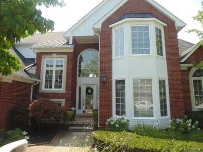 Macomb Single Family Home For Sale: 54911 Flamingo Dr