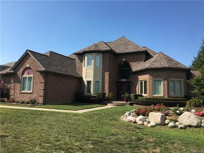 Utica Single Family Home For Sale: 13575 Towering Oaks Dr