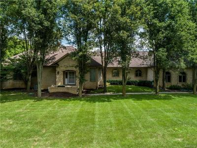 Oakland Twp Single Family Home For Sale: 3577 Orion Rd