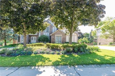 Farmington Hills Single Family Home For Sale: 25217 Witherspoon St