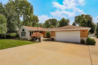 Troy Single Family Home For Sale: 1336 Philatha Dr