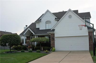 Chesterfield  Single Family Home For Sale: 49129 Townsend Ln