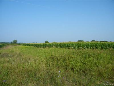 Lapeer Residential Lots & Land For Sale: Squaw Lake Rd