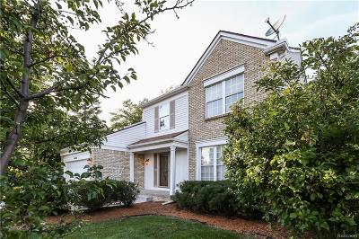 Canton Single Family Home For Sale: 44984 Saltz Rd