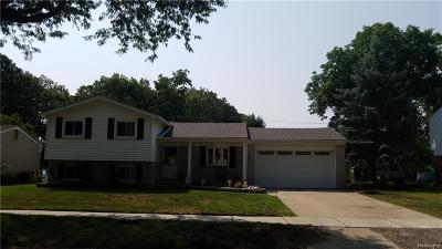 Livonia Single Family Home For Sale: 33059 Scone St