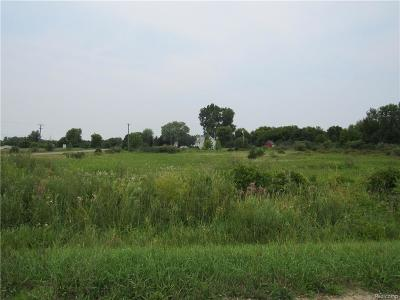 Lapeer Residential Lots & Land For Sale: Fostoria Rd