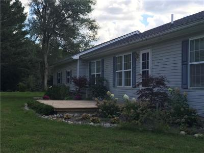 Lapeer Single Family Home For Sale: 2152 Five Lakes Rd