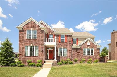 Canton Single Family Home For Sale: 2498 The Crossings Ln