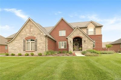 Rochester Hills Single Family Home For Sale: 3840 Somerset Cir