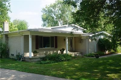 Farmington Single Family Home For Sale: 36604 Brittany Hill Crt