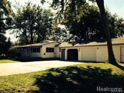 Lapeer Single Family Home For Sale: 6041 Van Dyke Rd
