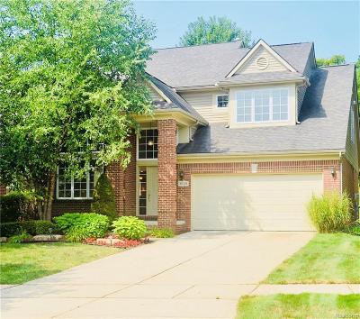 Northville Single Family Home For Sale: 16421 Ridgewood Crt