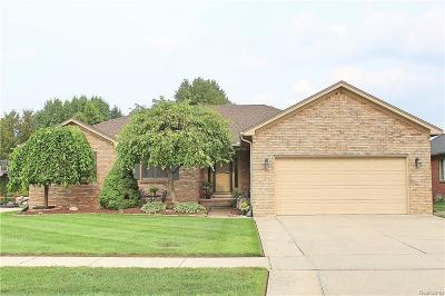 Macomb Single Family Home For Sale: 54378 Bartram Dr