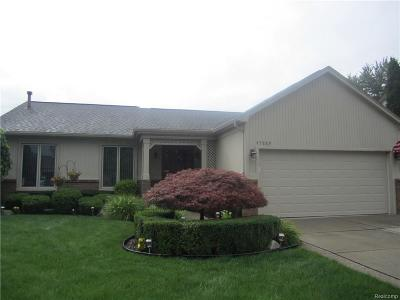 Macomb Single Family Home For Sale: 47889 Mount Vesuvius Dr