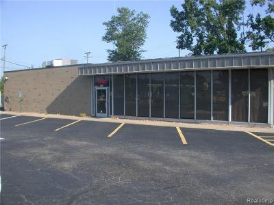Commercial/Industrial For Sale: 6041 15 Mile Rd