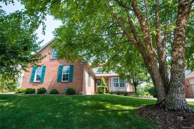 Rochester Hills Single Family Home For Sale: 2723 Fox Woods Ln