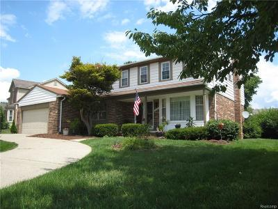 Northville Single Family Home For Sale: 16392 Weatherfield Dr
