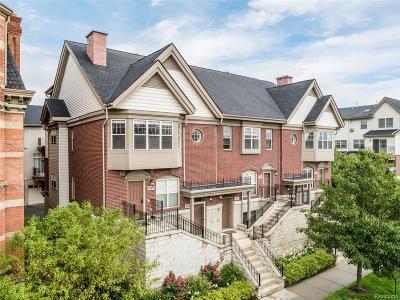 Detroit Condo/Townhouse For Sale: 129 Winder St