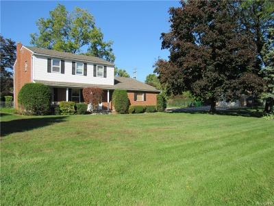 Harrison Twp Single Family Home For Sale: 38159 Reimold St