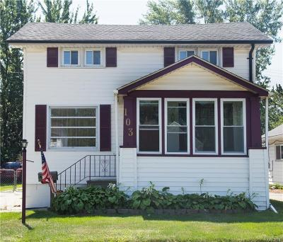 Clawson Single Family Home For Sale: 103 Tecumseh St