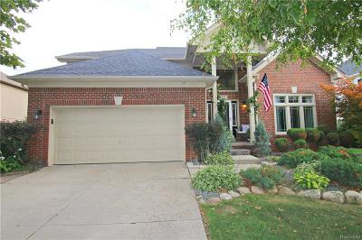 Rochester Hills Single Family Home For Sale: 969 Maidstone Dr