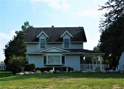 Northville Single Family Home For Sale: 48907 Seven Mile Road