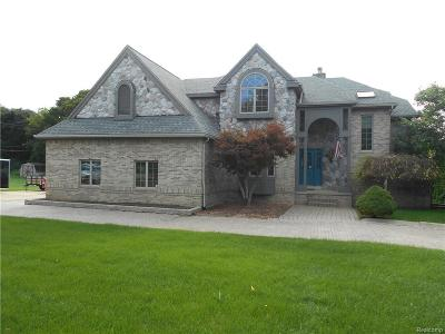 Northville Single Family Home For Sale: 20825 Meadowbrook Rd