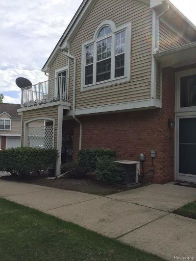 Shelby Twp Condo/Townhouse For Sale: 56156 Troon N