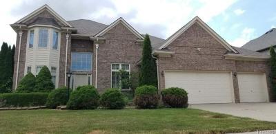 Rochester Hills Single Family Home For Sale: 2056 Somerville