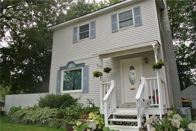 New Baltimore Single Family Home For Sale: 51225 Clay St