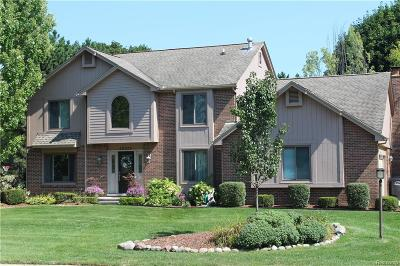 Northville Single Family Home For Sale: 46635 N Valley