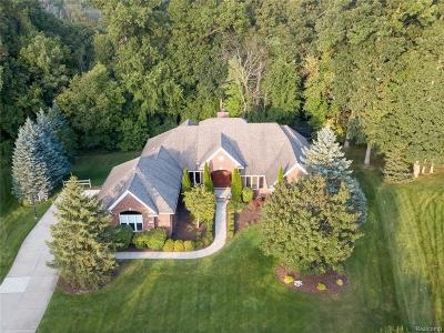 Oakland Twp Single Family Home For Sale: 3649 Mountain Laurel Crt