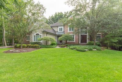 Northville Single Family Home For Sale: 18125 Laurel Springs Crt