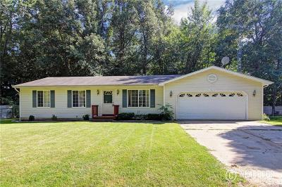 Lake Orion Single Family Home For Sale: 790 Luna Crt