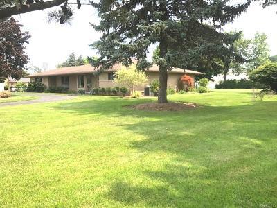 Clinton Township Single Family Home For Sale: 37934 E Horseshoe Dr