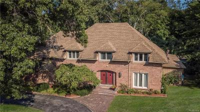Bloomfield Hills Single Family Home For Sale: 7449 Stony River Crt