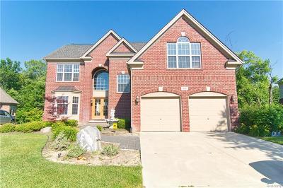 Oakland Twp Single Family Home For Sale: 941 Wynstone Cir N