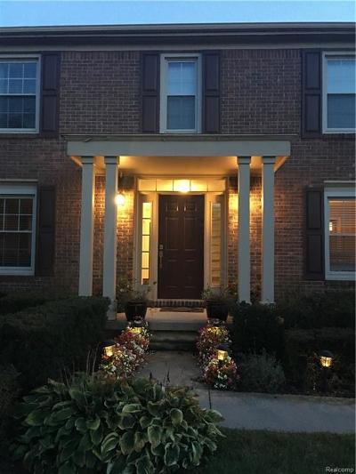 Northville Single Family Home For Sale: 17152 Cameron Drv Dr