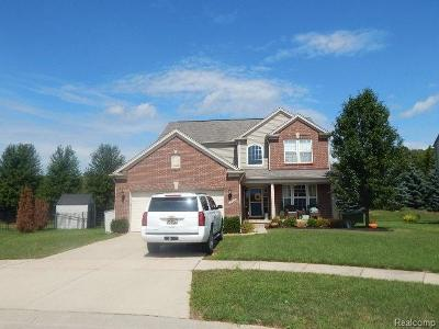 Macomb Single Family Home For Sale: 19033 Gearhart Dr