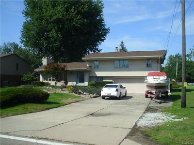 Harrison Twp Single Family Home For Sale: 38111 Lakeshore Dr